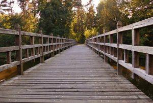 Mudar de carreira: uma transição comum na vida profissional de hoje